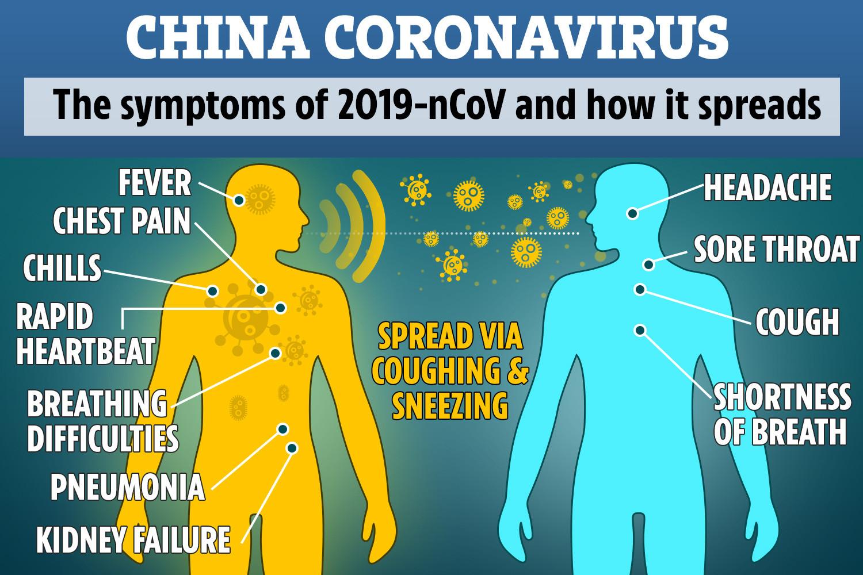 Corona Virus Prevention